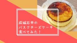 成城石井の バスクチーズケーキ