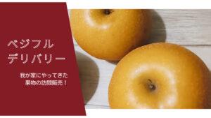 果物の訪問販売、ベジフルデリバリー